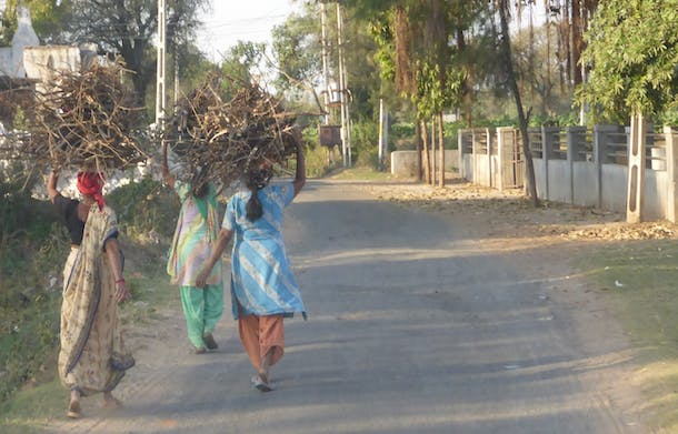 India Women Carrying Firewood for Cooking
