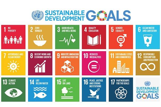 SDG Poster