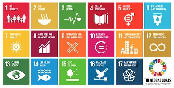 global-goals-full-icons.png__2318x1180_q85_crop_subsampling-2_upscale-1400x713